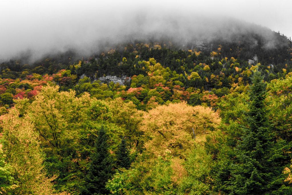 Mount Moosilauke socked in by clouds.