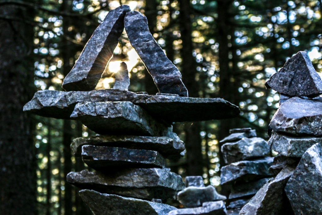 """There are several """"rock gardens"""" along the AT in southern Vermont."""